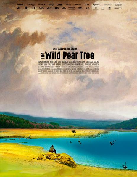 The wild pear tree de Nuri Bilge Ceylan